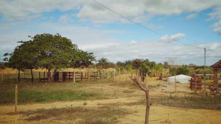 Governo da Bahia decreta estado de emergência em 140 municípios
