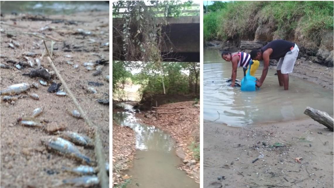 Chapada: INEMA decreta suspensão de 50% da captação de água do Rio Utinga e de seus afluentes
