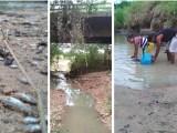 Rio Utinga seco