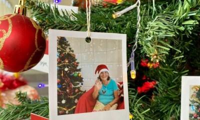 """Lar de Idosos Perseverança realiza campanha """"Seja Luz"""" neste Natal"""