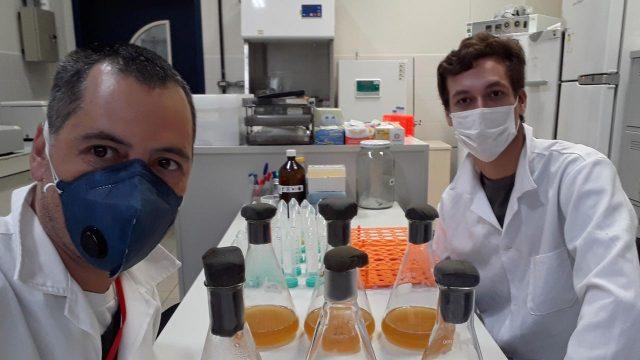 Professor Luciano Huergo, criador do teste, e o bolsista de iniciação científica, Marcelo Conzentino, no Laboratório de Microbiologia Molecular da UFPR Litoral (Foto: UFPR)