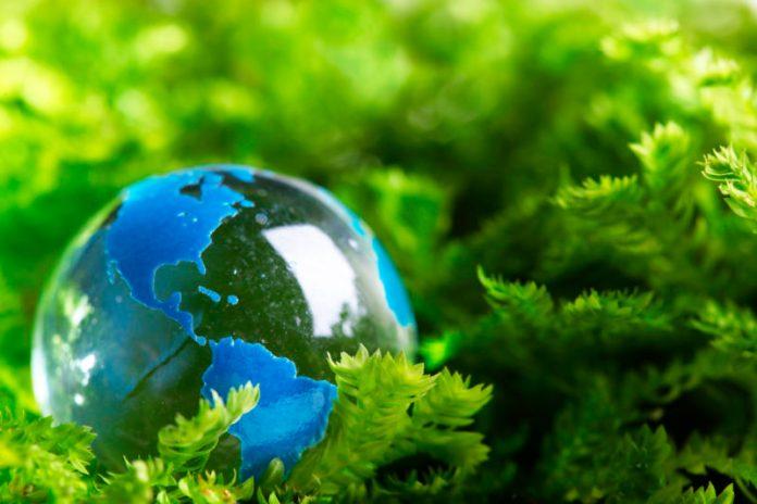 Meio ambiente e sustentabilidade