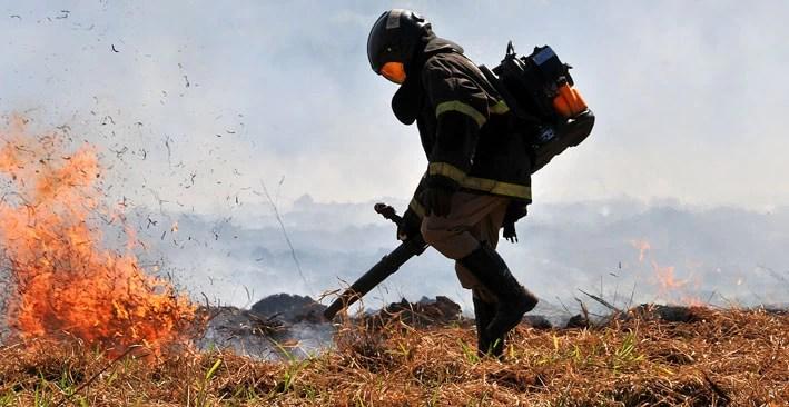 Read more about the article 'Queima controlada' no Pantanal segue suspensa até 30 de outubro