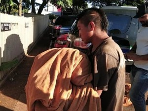 Read more about the article Justiça manda prender jovem que matou a mãe e queimou corpo