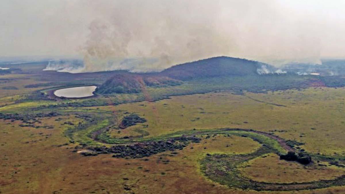 Read more about the article Governo alerta para seca severa em Mato Grosso do Sul