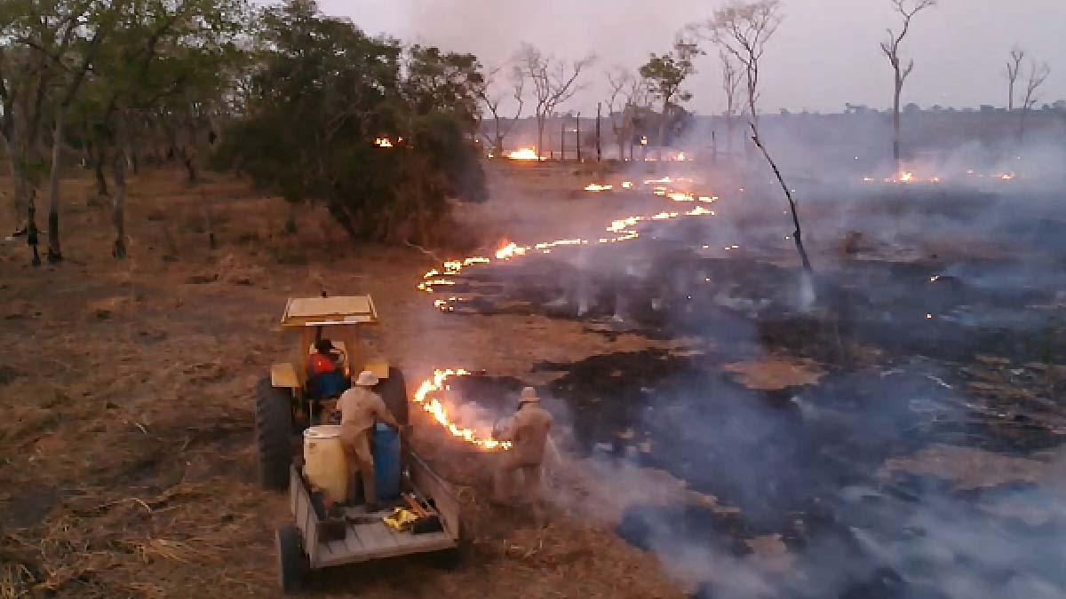 Read more about the article Operação Hefesto recebe reforço de equipes após aumento de focos de incêndios no Pantanal