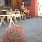 Guitar in Joshua Tree