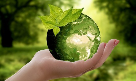 Hvor godt er det egentlig for klimaet å være veganer?
