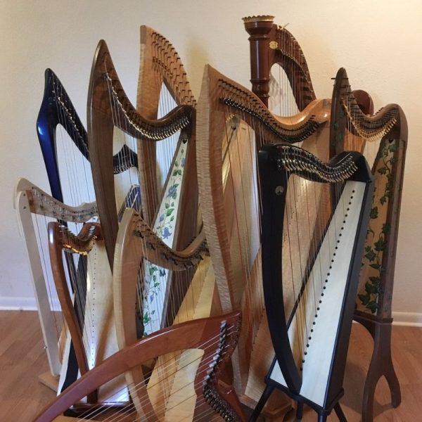 group harp shot 800