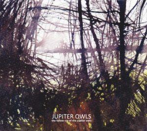 Jupiter Owls