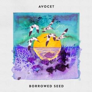 Borrowed Seed
