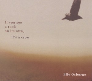 If You See A Rook On Its Own It's A Crow