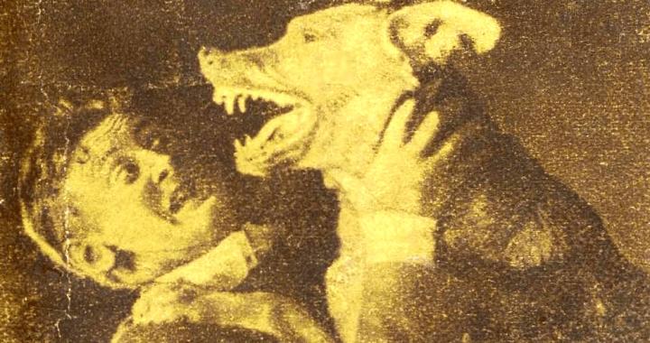 Cover from book by Arthur Conan Doyle (1859–1930).