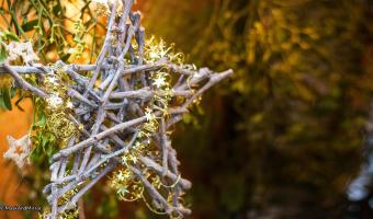 Yule decoration © MaskAndMirror