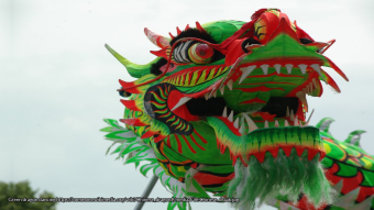 Green dragon dancing https://commons.wikimedia.org/wiki/Chinese_dragon#/media/File:Chinese_draak.jpg