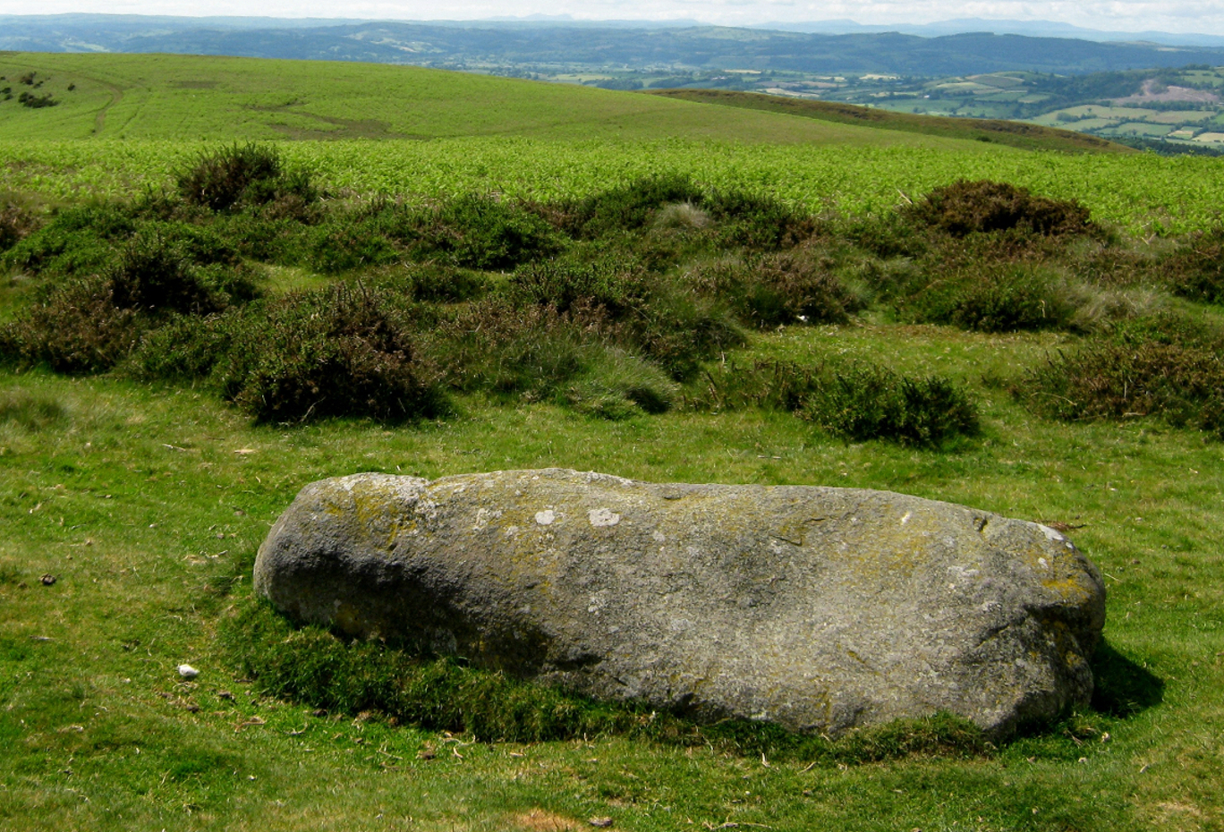 The 'Cow Stone' at Mitchell's Fold