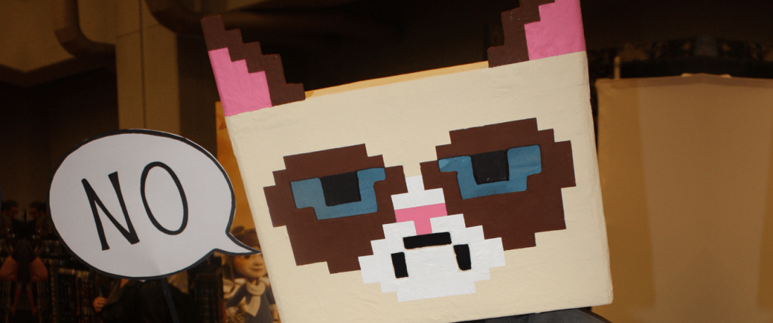 Person wearing a pixelated 'Grumpy Cat' mask, holding up a speech bubble saying 'No'.
