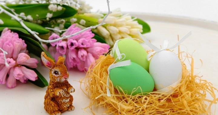 Hare & Eggs in a Nest https://pixabay.com/en/easter-eggs-egg-nest-easter-nest-3257098/