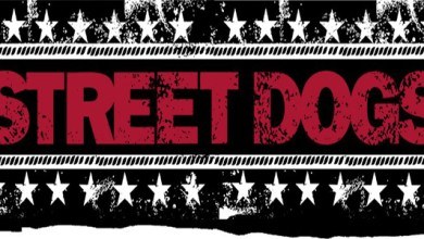 Photo of Street Dogs Stream New Songs