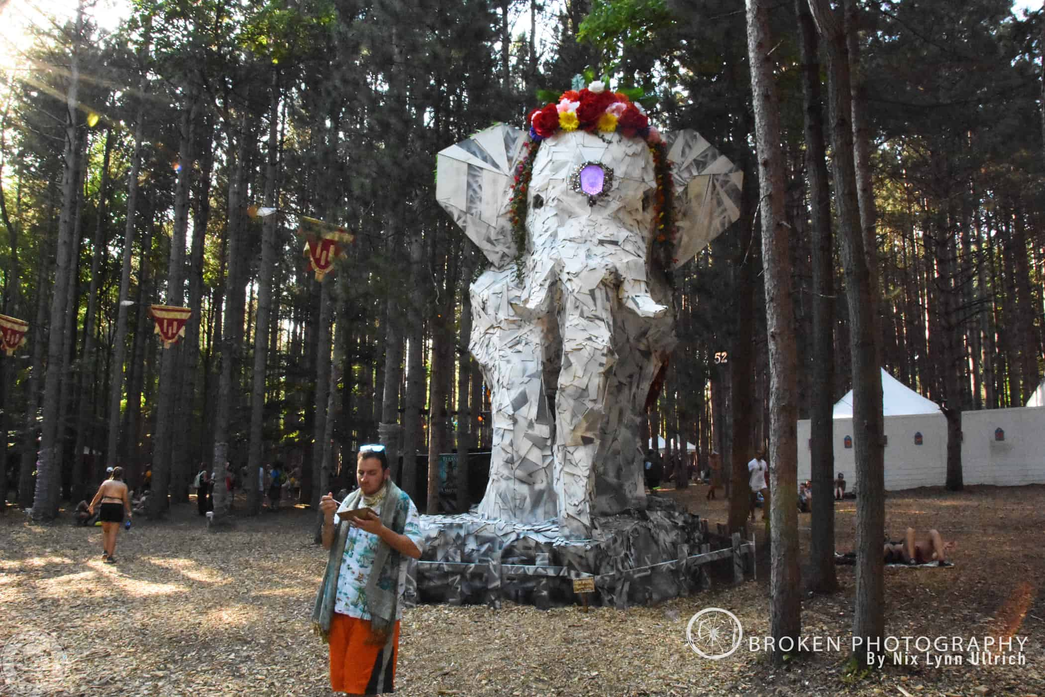 BP_Forest033
