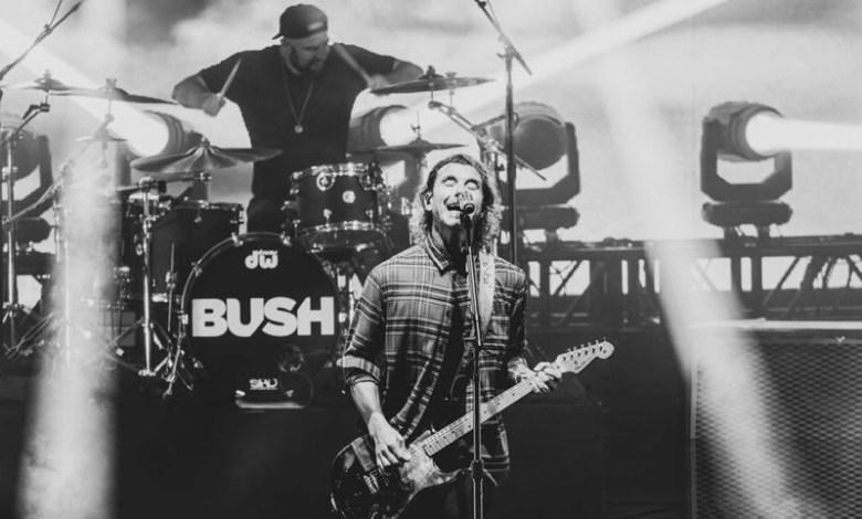 Bush in Concert