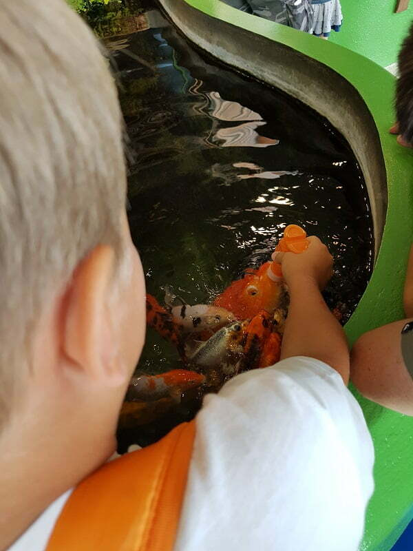 barcellona-aquarium