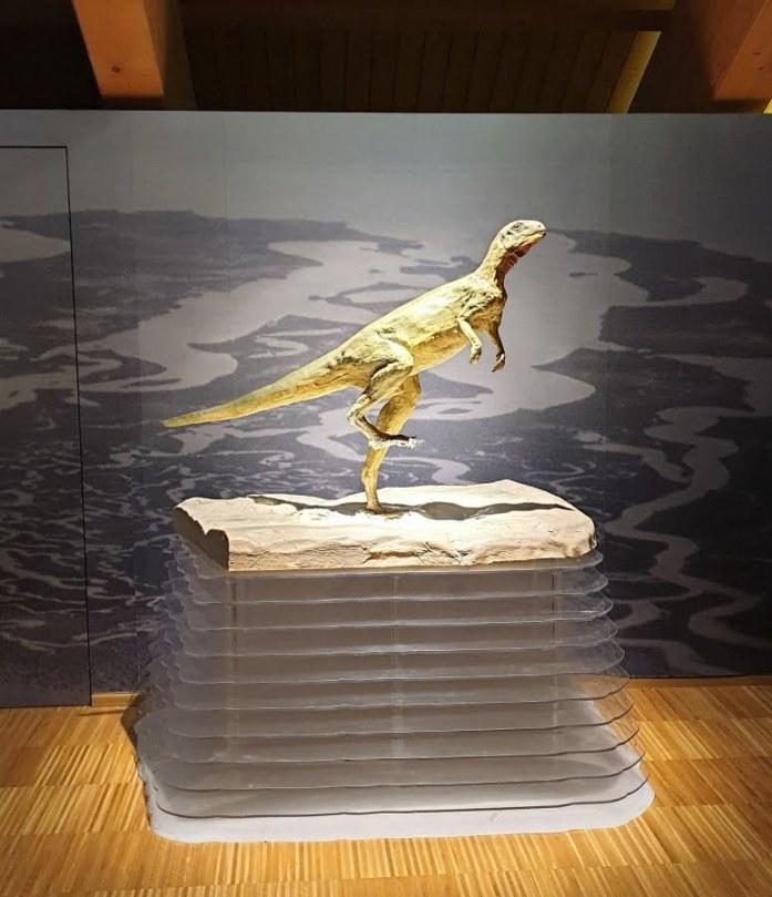 dinosauro-museo-selva