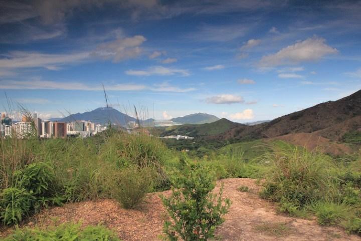 山坡空地的四周風景