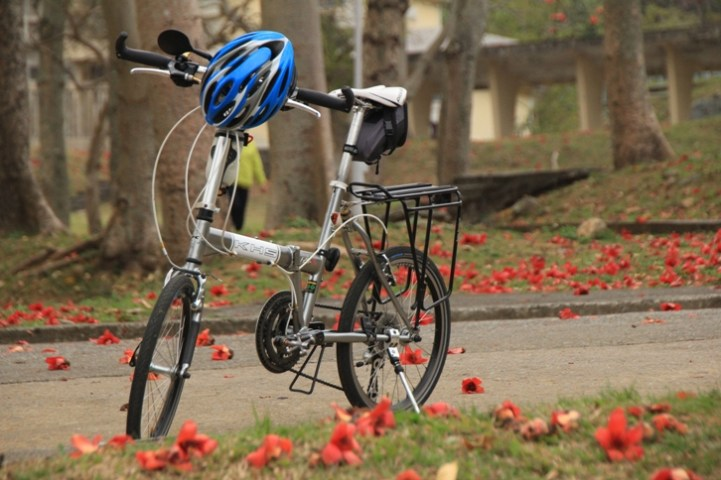單車友也來賞花