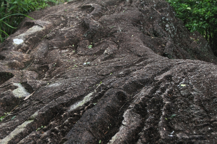 最大的一舊蛇石