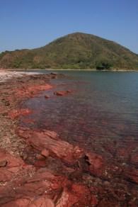 海水被染成紅色