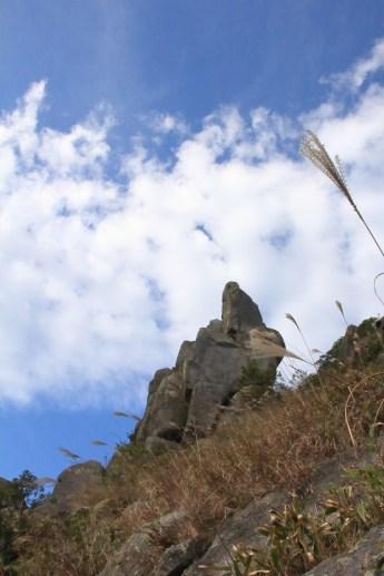 仰望天際的巨鳥石