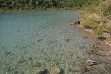 水非常清澈