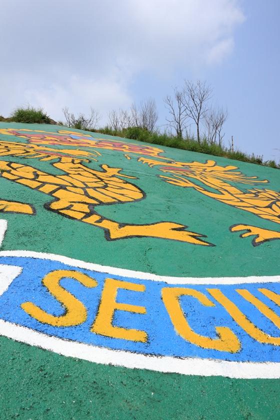 山上的軍徽