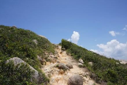 少有樹蔭的山路