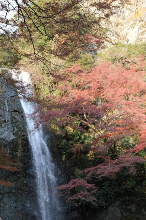 紅葉與瀑布