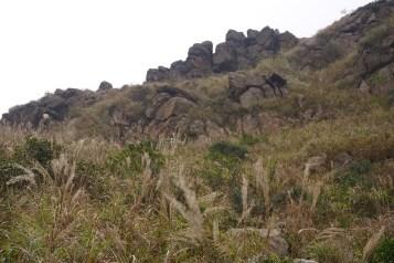凰峰的疊石