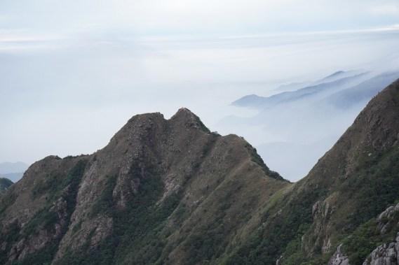 雲海作背景的狗牙嶺