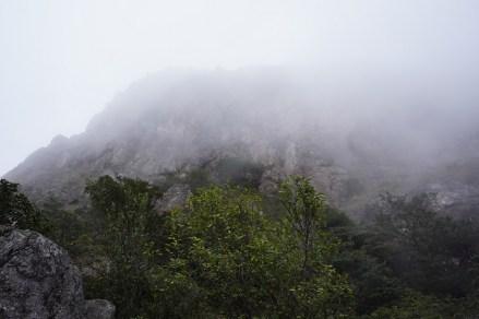 雲霧中的倒腕崖