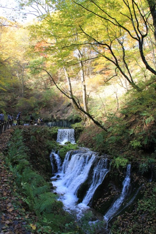 白絲瀑布前的溪流