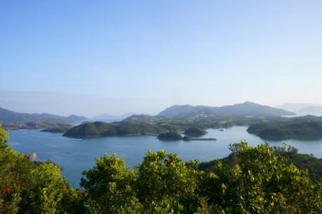 欣賞滘西洲的風景
