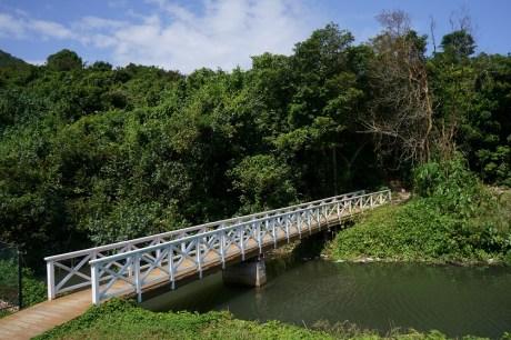 新建的白橋