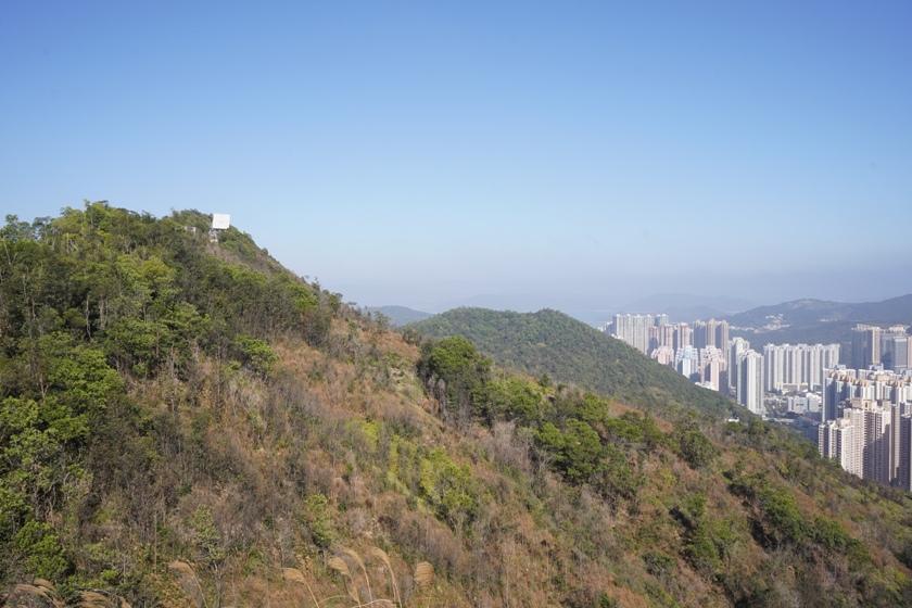 回望五桂山