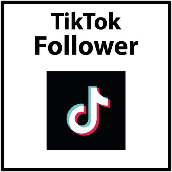 TikTok Follower kaufen