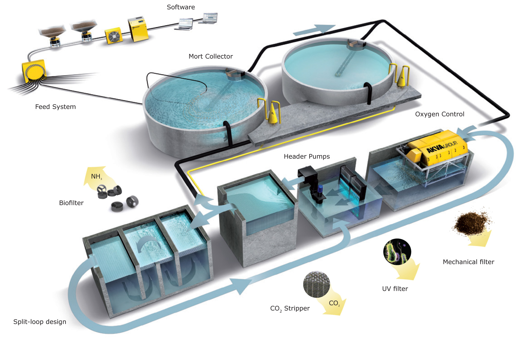 Eco Pool Pump Installation Diagram Filtration System