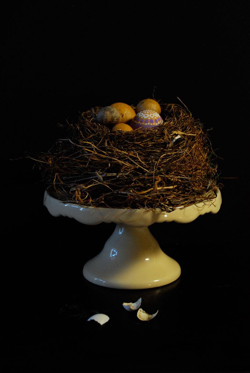 Nest Cake  © Yvonne Cornell, 2013
