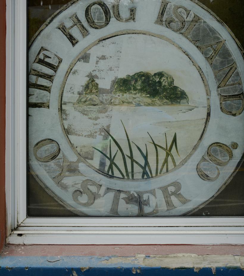 Hog-Island-Logo