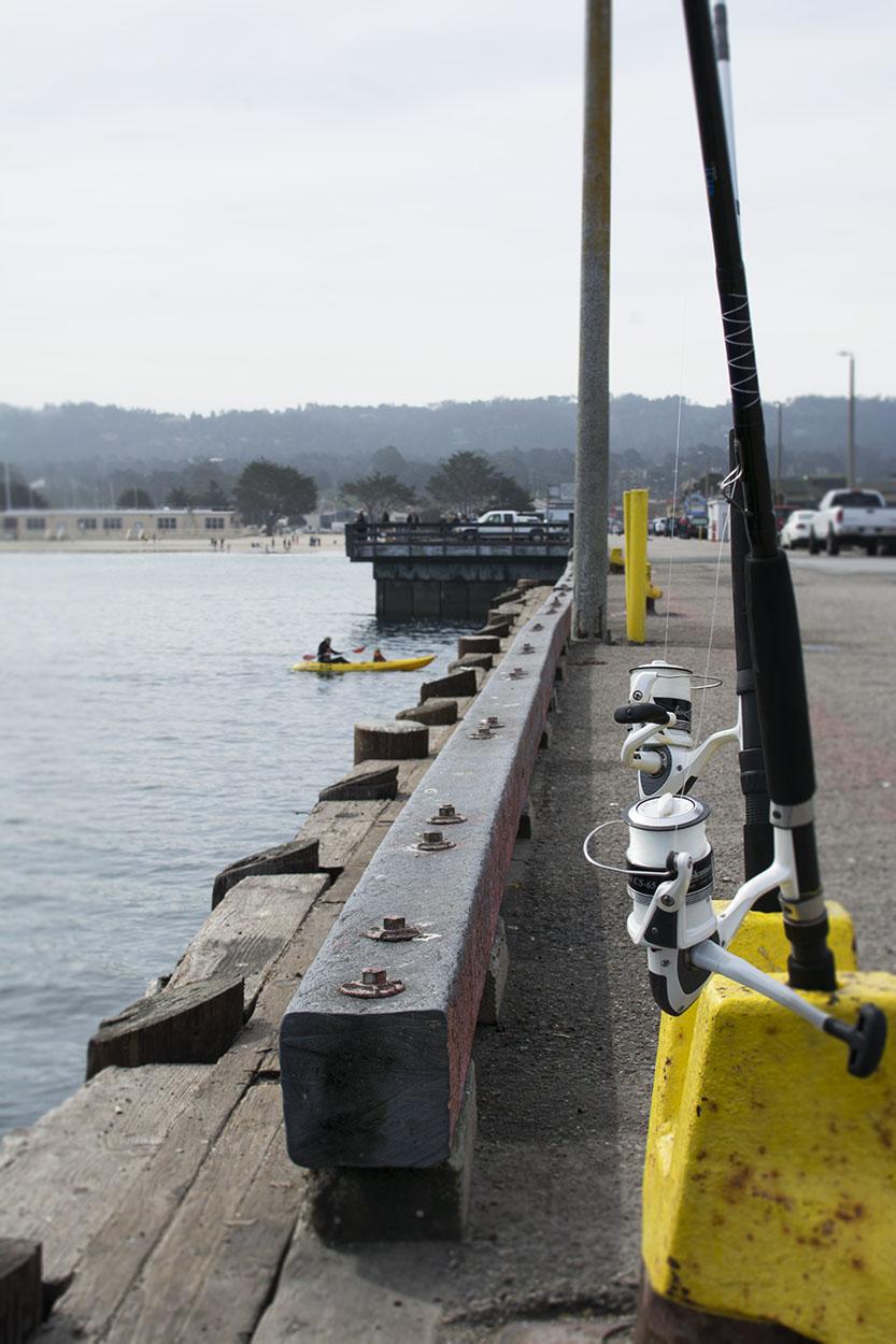 Pier Fishing Rods