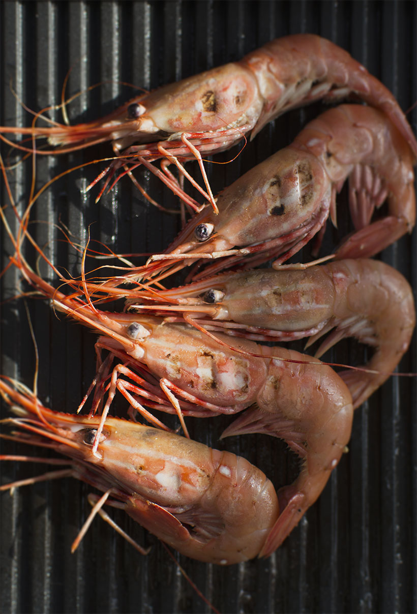 Spot Prawns on Grill