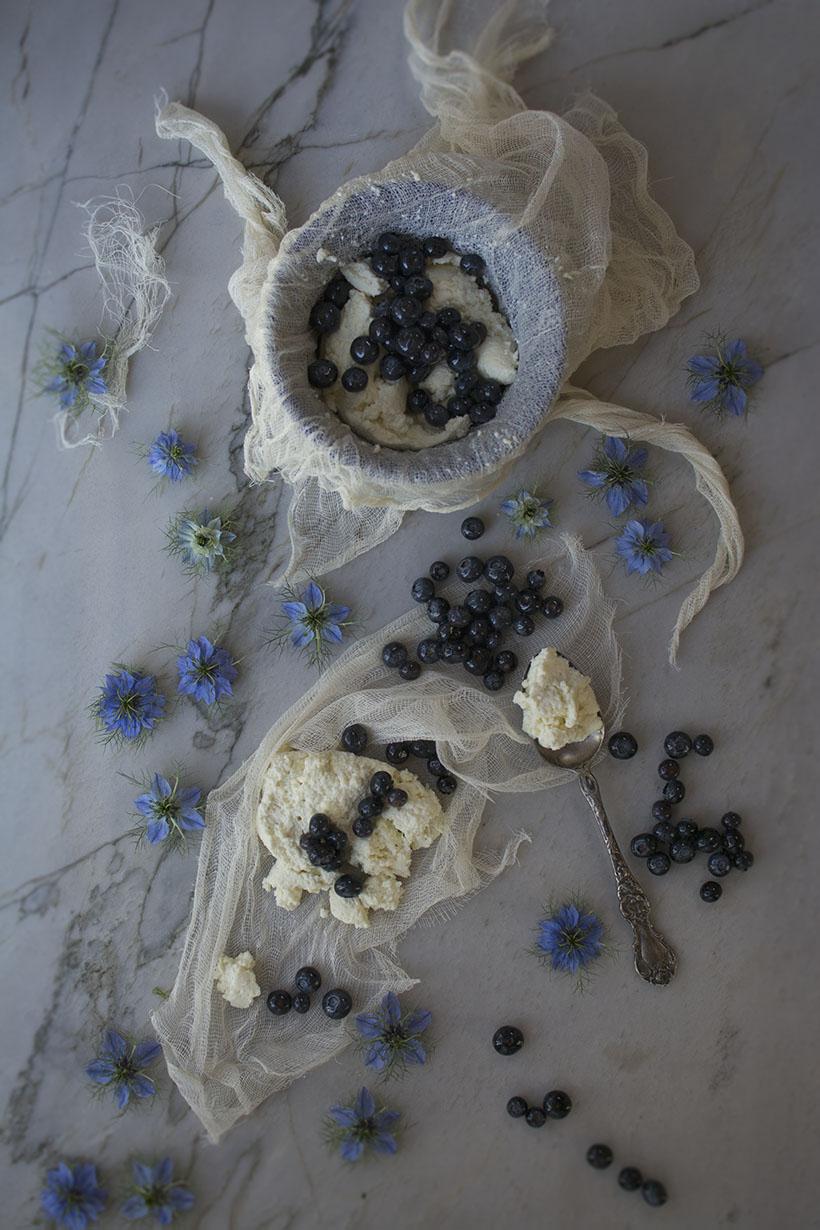 Blueberries Overhead
